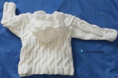 modele pull bebe tricot gratuit